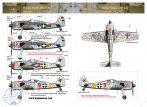 """FW-190 F-8 """" Magyarország, 1944-45 tele"""""""
