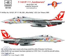 "F-14A VF-111 ""Sundowners"" - 1/48"