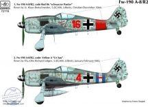 FW 190 A-8/R2