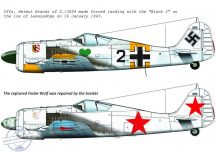 FW-190 A-4 (fekete 2 JG54; + Szovjet zsákmány festés)