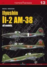 Ilyushin Il-2 AM-38 all models