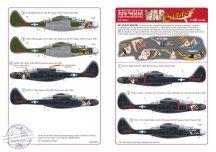 Northrop P-61A/P-61B 'Black Widow' (7) 25526 'Ni... - 1/48