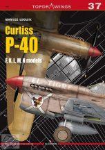 Curtiss P-40 F,K,L,M,N models