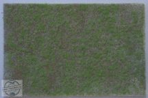 Tavaszi táj - dioráma lap